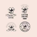 Insignes conception, produit biologique de coton Vecteur avec le graphique Photos libres de droits