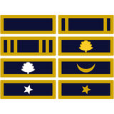 Insignia Army of Mississippi Royalty Free Stock Photo