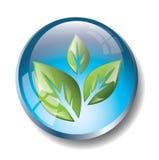 Insignia azul del eco Foto de archivo libre de regalías