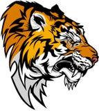 Insignia de la mascota del tigre Foto de archivo libre de regalías
