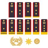Insignia fire service. Military ranks and insignia of the world. Illustration on white background Stock Images