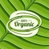 Insignia orgánica del producto en textura verde de la hoja Ilustración del vector Imagenes de archivo
