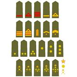 Insignia of the Spanish Army Royalty Free Stock Photo