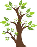 Insignia verde del árbol Foto de archivo libre de regalías