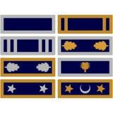 Insignia volunteer forces of South Carolina Stock Photos