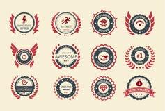 Insignias del logro Imagen de archivo libre de regalías