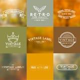 Insignias del vector del vintage ilustración del vector