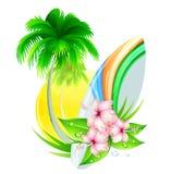 Insignias del verano Imagen de archivo libre de regalías