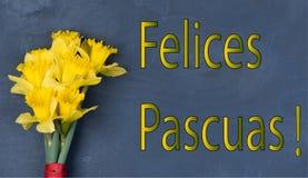 Inskrift Felices Pascuas med nya blommor Royaltyfria Bilder