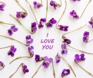 Inskrypcja kocham ciebie w ramie mali lasowi kwiaty purpurowi na białym tle Zdjęcia Stock