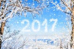 Inskrypcja nowy rok 2017 tło płatków śniegu biały niebieska zima Obraz Royalty Free