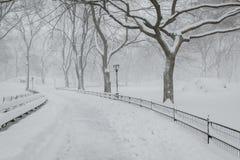 Insnöad Central Park - fridsam vinteratmosfär - New York Royaltyfri Foto