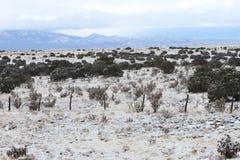 Insnöad hög öken Santa Fe som är ny - Mexiko Royaltyfria Bilder