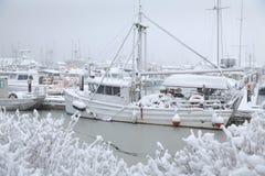 Insnöad Steveston hamn, Richmond, British Columbia Royaltyfri Foto