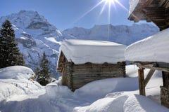 Insnöade schweiziska fjällängar Royaltyfri Foto