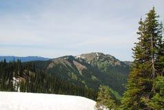 Insnöat bergen av den olympiska nationalparken Royaltyfria Foton