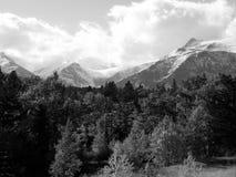 Insnöat bergen i svartvitt Royaltyfri Bild