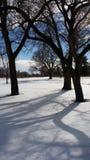 Insnöat en golfbana Fotografering för Bildbyråer