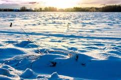 Insnöat ett fält på soluppgång arkivfoton