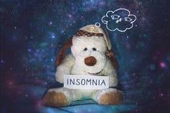 Insomnie, insomnie, trouble du sommeil, problème dormant, concept mental d'exercice Chien de jouet mou dans le bonnet de nuit com photographie stock libre de droits