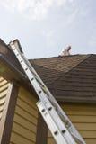 Inspecteur de toit Photo libre de droits