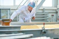 Inspecteur supérieur à l'usine de nourriture photos stock
