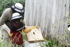 Inspecting The Hive. Father and daughter working on bee hive together Stock Photography