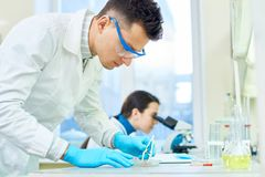 Inspecting Quality of Cultured Meat Sample. Profile view of concentrated scientist inspecting quality of in vitro meat sample while his female colleague using royalty free stock photos