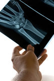 Inspecting X-Ray Stock Photography