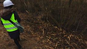 Inspector de sexo femenino de la silvicultura en cuesta cerca de derribar arbustos almacen de video