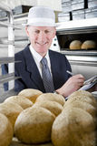 Inspector examining loaves of bread in bakery Stock Photography