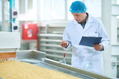 Inspector at Food Factory. Portrait of senior factory worker checking production process at food plant standing by conveyor belt in modern clean workshop, copy stock image