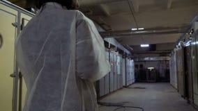 Inspetor com caminhada do patinho através do corredor na incubadora na exploração avícola video estoque
