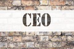 Inspiración conceptual del subtítulo del texto del aviso que muestra al CEO Concepto del negocio para el líder de funcionamiento  Imágenes de archivo libres de regalías