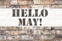Inspiración conceptual del subtítulo del texto del aviso que muestra el hola mayo Primavera Concepto del negocio para el preventi Foto de archivo