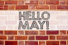 Inspiración conceptual del subtítulo del texto del aviso que muestra el hola mayo Primavera Concepto del negocio para el preventi Fotografía de archivo