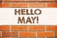 Inspiración conceptual del subtítulo del texto del aviso que muestra el hola mayo Primavera Concepto del negocio para el preventi Foto de archivo libre de regalías