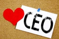 Inspiración conceptual del subtítulo del texto de la escritura de la mano que muestra el concepto del CEO para el wr de funcionam Foto de archivo
