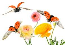 Inspiración de la fauna Imagenes de archivo