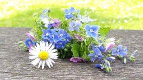 Inspiración de la flor Foto de archivo