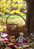 Inspiración del otoño Imágenes de archivo libres de regalías