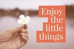 """Inspiracyjna motywacyjna wycena """"enjoy mały things† o fotografia stock"""