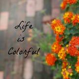 Inspiracyjna Typograficzna wycena - życie jest Kolorowy Zdjęcia Stock