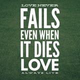 Inspiracyjna wyceny miłość nigdy nie udać się nawet gdy ja umiera miłości zawsze żywej ilustracja wektor