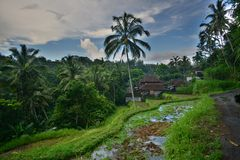Inspirating exotic Indonesia with beatiful island Bali royalty free stock photography