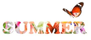 Inspiration d'été de faune Image libre de droits