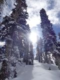 Inspiration. The sun comes out from behind the clouds and reflects off the snow Stock Images