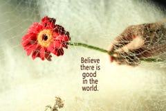Inspirational citaat gelooft er in de wereld goed zijn Mens en aard de achtergrond van het bloemconcept royalty-vrije stock foto