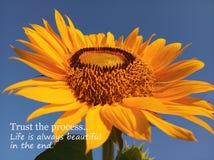 Inspirational motievencitaatvertrouwen het proces Het leven is altijd mooi uiteindelijk Met mooie grote & enige zonnebloem royalty-vrije stock fotografie