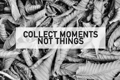 Inspirational motivating quote of collect moments not things on full frame dried leaves in black and white.  stock images